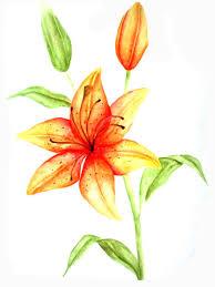 тритатушки архив блога эскизы тату лилия