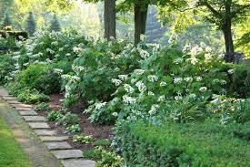 Partial Shade Flower Garden Design Formal Beds Filled With Hydrangeas Peonies Primroses