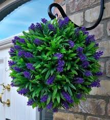 hanging plants outdoor nz flower ball for your garden