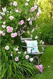 Small Picture 35 best garden by color images on Pinterest Flower gardening