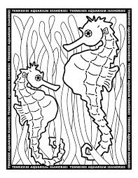 Small Picture Seahorse coloring Free Animal coloring pages sheets Seahorse