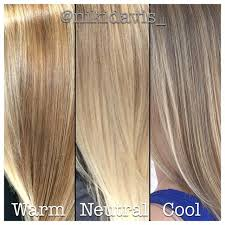 Neutral Hair Color Chart No Blonde Is One Size Fits All This Shows Cool Neutral And