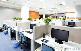 plants for office cubicle. Good Office Plants For Cubicle Workers Smaller That Can Be Set Up On A Desk