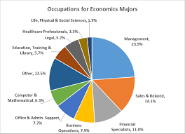 Pie Chart Of College Majors University Of Houston