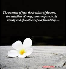 Beauty And Friendship Quotes