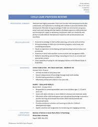 Child Care Providersume Worker No Experience Description