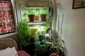 indoor apartment gardening. Delighful Apartment Indoor Apartment Gardening  By Chris Trudeau With Apartment Gardening