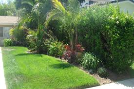 office landscaping ideas. Tropical Landscaping Ideas For Front Yard Amys Office Landscape Small Yards Gallery How To Design Home Wonderfull Marvelous Decorating And Furniture