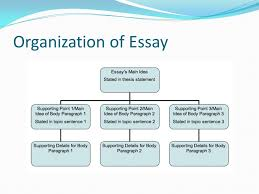 writing an essay career fair paper ppt video online  7 organization of essay