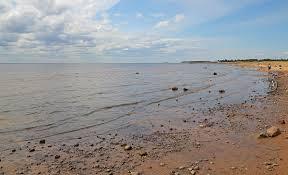 Финский залив — Википедия