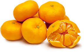 Mandarin Tangerines Satsumas Mandarins The Oppenheimer Group