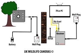 wireless bird box camera system description bird camera wiring