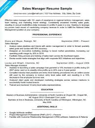 Sample Insurance Resume Sales Manager Resume Example Examples Of