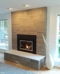 image of modern fireplace screens glass ideas