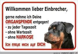 Pin Von Harri Harri Auf Hunde Dogs Hund Funnies Lustige