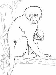 Small Picture Monkey Coloring Page Monkey Coloring Page Wecoloringpage Pages For