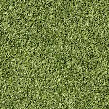 Free Stock Photo of Tall grass texture Freerange Stock Tall