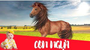 Dạy bé học con ngựa | Dạy em bé tập nói tên và hoạt động các con vật -  YouTube