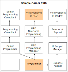 79 Correct Information Technology Career Path Flow Chart