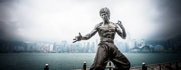 Bruce Lee Water Quote Amazing 48 Bruce Lee Quotes Be Water And Other Agile Thoughts