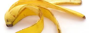 Resultado de imagem para casca das frutas