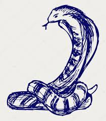 эскиз змеи эскиз змея стоковое фото Kreativ 13578945