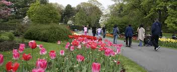 the tulips at clark botanic gardens this is one of north hempstead s best outdoor spaces 12 acres of gardens open space and nature