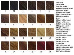 28 Albums Of Revlon Hair Color Shades Chart Explore