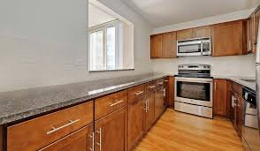 Enjoy A Newly Renovated Kitchen With Granite Countertops And Stainless  Steel Appliances   Hyde Park