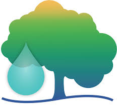4 tips to save water and save trees