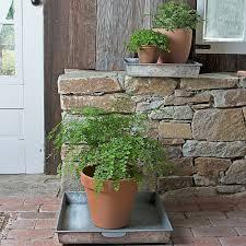 indoor gardening supplies. Indoor Growing Supplies Gardening