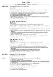 Big Data Sample Resume Data Architect Big Data Resume Samples Velvet Jobs 11