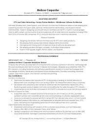 Java architect resume example