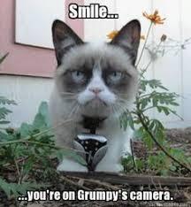 Grumpy cat !! on Pinterest | Grumpy Cat Meme, Grumpy Cat Quotes ... via Relatably.com