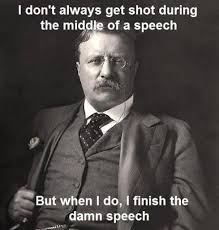 Quotes By Teddy Roosevelt