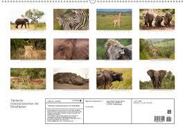 Kalender 2018 Din A2 Tierische Glücksmomente Mit Weisheiten