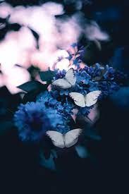 Aesthetic Blue Wallpaper Flowers ...