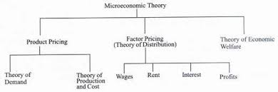 Difference Between Micro And Macro Economics Explained