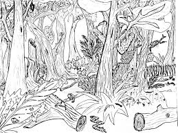 Small Picture Coloring Book Nature Scenes Coloring Pages