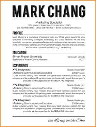 Resume Template Objectives Professional Resumes Throughout What