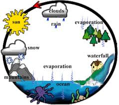 images about water cycle on pinterest   water cycle  water        images about water cycle on pinterest   water cycle  water cycle activities and science