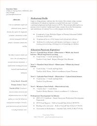 Extraordinary Sample Resume Teacher Elementary With Additional