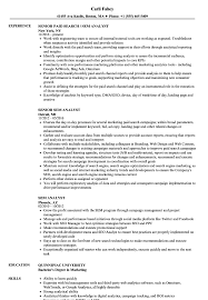 Web Analyst Resume Sample SEM Analyst Resume Samples Velvet Jobs 14