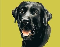 acrylic dog painting oil painting on canvas acrylic black dog pet paint by number kit 1 acrylic dog painting