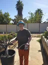 Addie Mills garden group were hard at it... - Southern River Community  Garden   Facebook