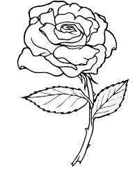 Coloring Page Of A Rose Coloring Page Roses Nature Printable