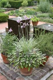 herb garden designs layouts. indoor herb garden design ideas layouts smalllans layout uk rectangular living room category with post winsome designs