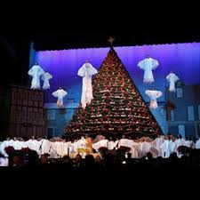 D0285 Living Christmas Tree 2010 Knoxville TN  YouTubeThe Living Christmas Tree Knoxville Tn