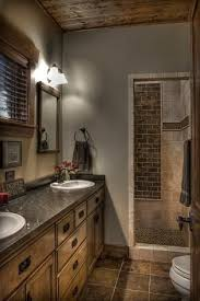 Delighful Gray And Brown Bathroom Color Ideas Colors Boy Inside Perfect