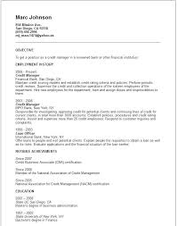 Resume With Achievements Sample Foodcity Me